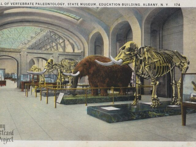 Hall of Vertebrate Paleontology, State Museum, Education Building