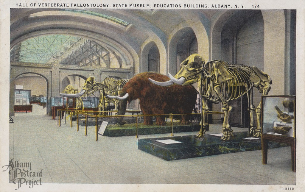 Hall of Vertebrate Paleontogy, State Museum, Education Building