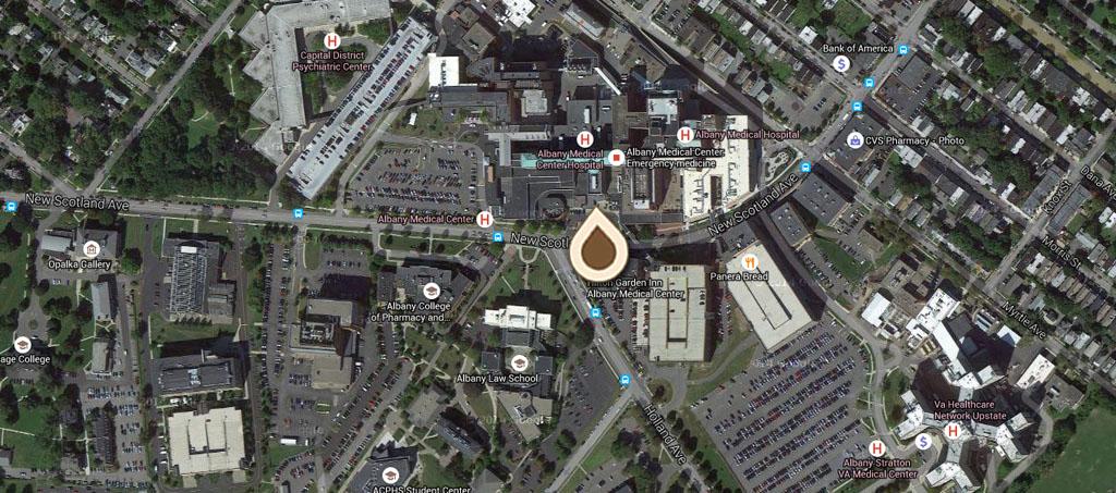 Map The Albany Hospital