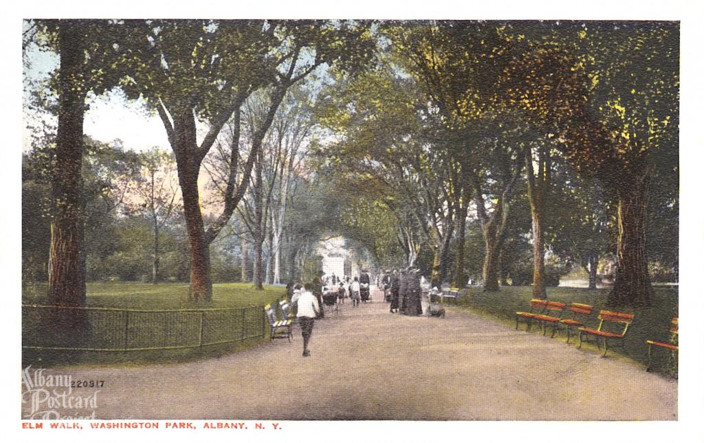 Elm Walk Washington Park
