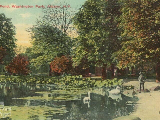Lily Pond, Washington Park